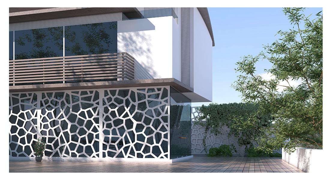 Celosia Mosaic www.demamba.com